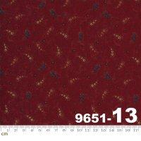Prairie Dreams-9651-13(A-06)