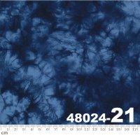 Tochi-48024-21(A-05)