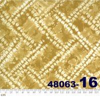 Tochi-48063-16(A-05)