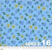 Cottage Bleu-48693-16(A-05)