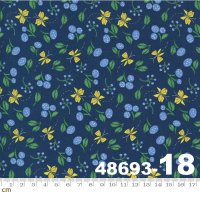 Cottage Bleu-48693-18(A-05)