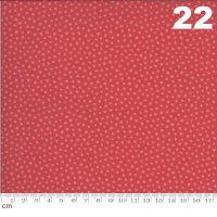 Regency Zarafa-42353-22(A-01)