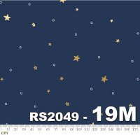 Birthday-RS2049-19M(メタリック加工)(A-13)<img class='new_mark_img2' src='https://img.shop-pro.jp/img/new/icons5.gif' style='border:none;display:inline;margin:0px;padding:0px;width:auto;' />