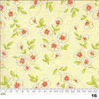 Figs & Shirtings-20390-16(A-06)