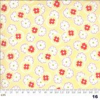 Figs & Shirtings-20392-16(A-06)