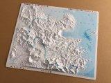 立体県別地図 大分県