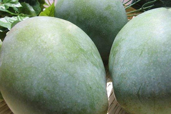 キーツマンゴー家庭用1玉(1玉1.2kg...