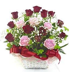 【クリックで詳細表示】赤バラとピンク薔薇のアレンジone13000/