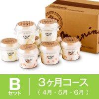【3ヶ月まとめてBセット】4月〜6月 季節の果実入りヨーグルト8個セットの商品画像